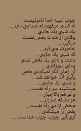 maryam - mohammadi
